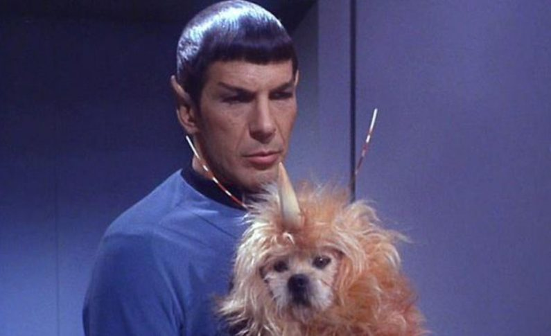 Friday Five: Pets In the 'Star Trek' Universe!