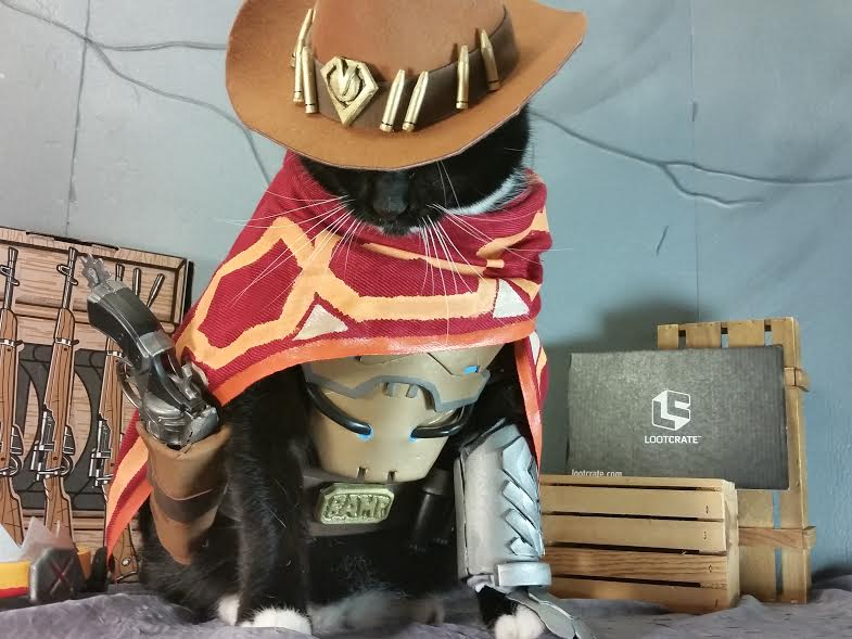 Loot Pets: Our Favorite Pet Cosplays!